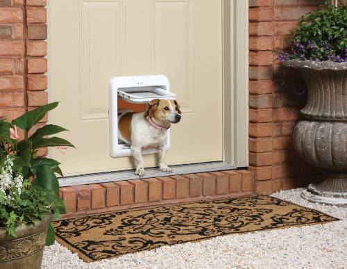 How to Make Your Pet Door Safer at Home